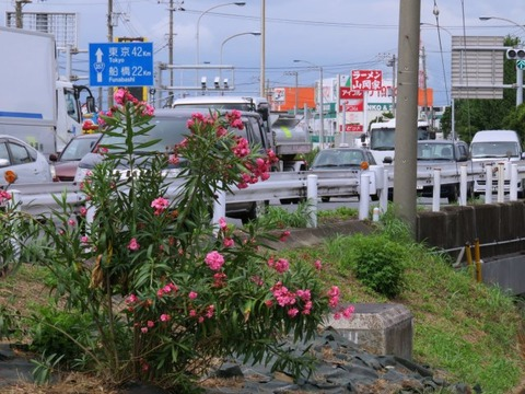 oudouishii17