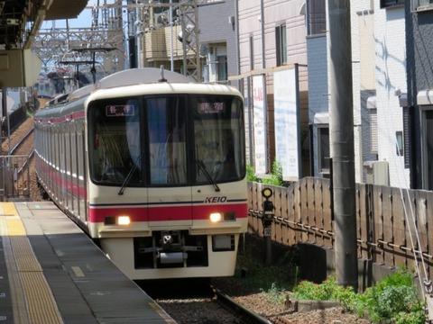 shibata02