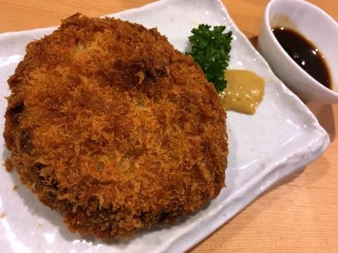mogamigawa20