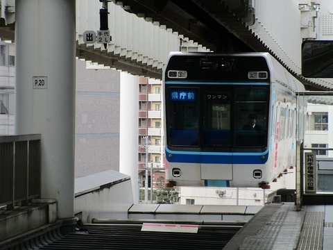 nikunamisho21