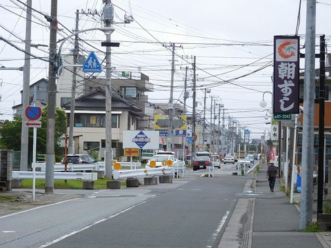 fujiyaanegasaki03
