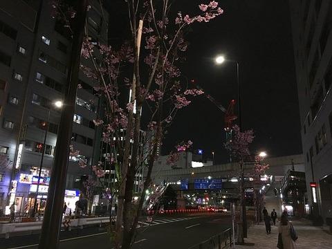 oreruishio3chome19