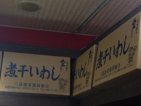 niboshiyagaku08