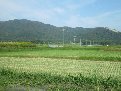 taikoushimodate14