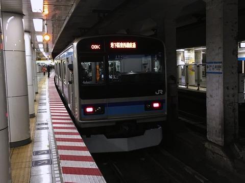 tsurusen202
