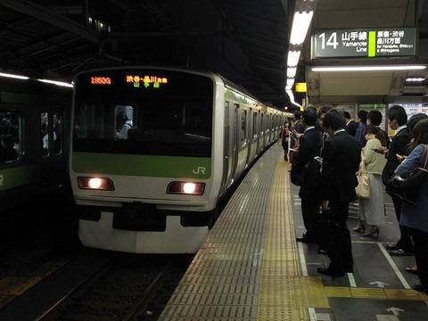 shoshinatatsu02