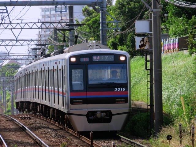kaijinsusuki02