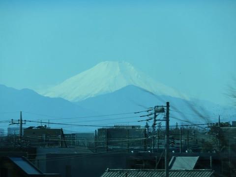 murasaki03