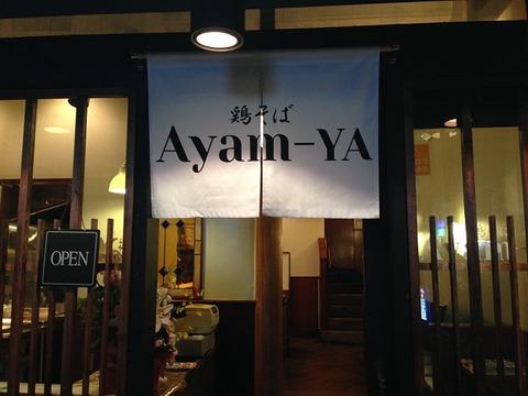 ayamya04