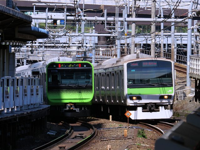 shokudohasegawa02