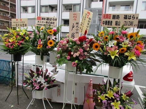 shinohara04