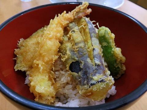 harumachikoiwa16