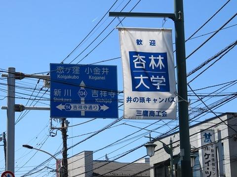 shimorenhimawari18