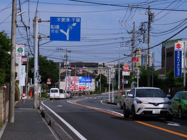 kaijinsusuki18
