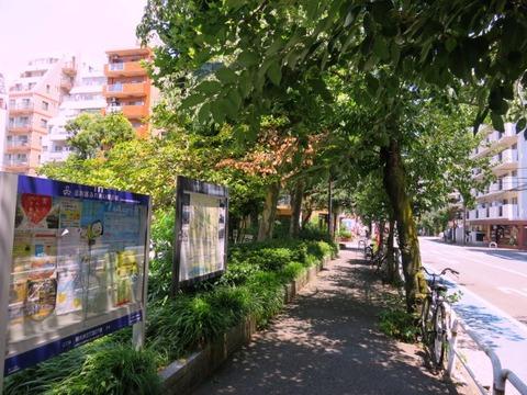 menyamizu03