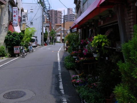 tokiwachuka15