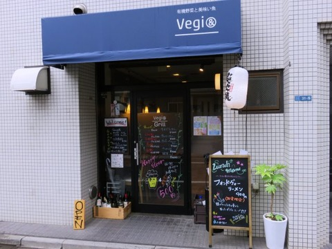 Vegigrill14