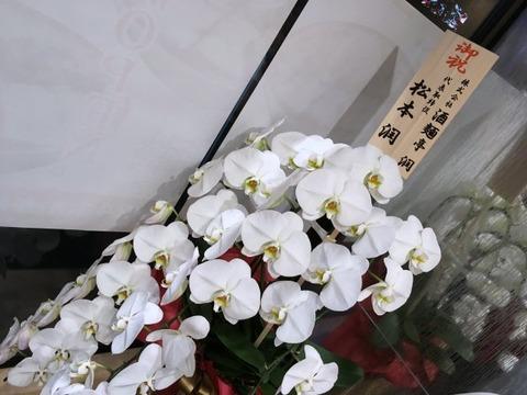 tanakasobashimbashi10