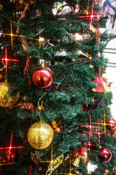 christmas0I9A4350_TP_V1
