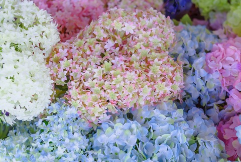 artificial-flowers-3120573_1280