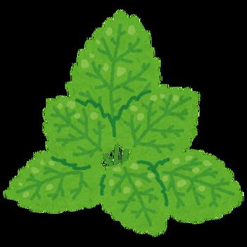 leaf_mint