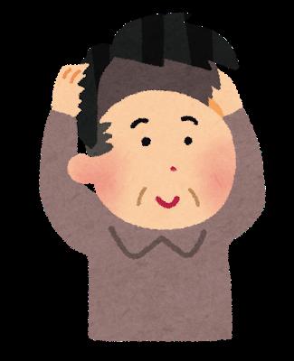 hair_katsura