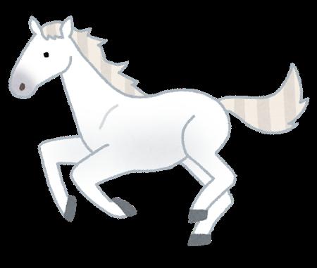 animal_horse_thoroughbred_white