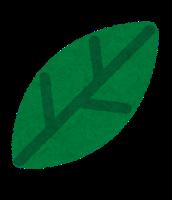 simple_leaf8