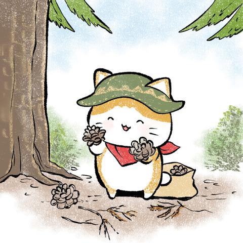 campcat_matubokkuri