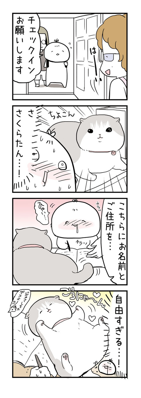 20160907_4koma2