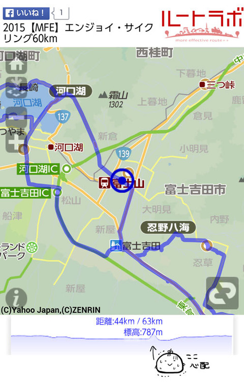 mfe_route