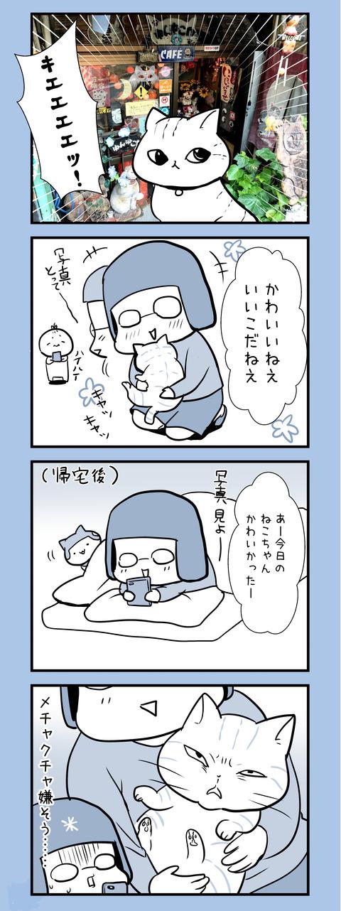 neko_iyagaru