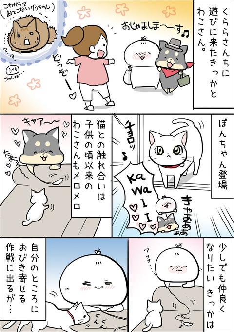 20171004_illust