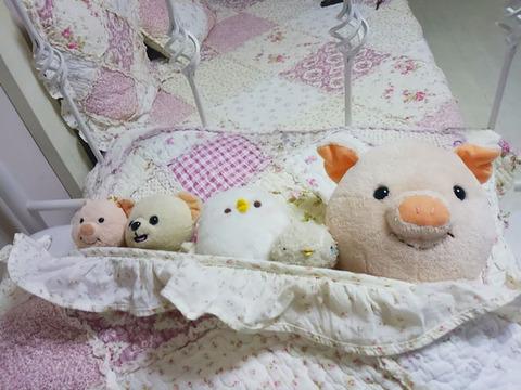 bluepoppy_oyasumi