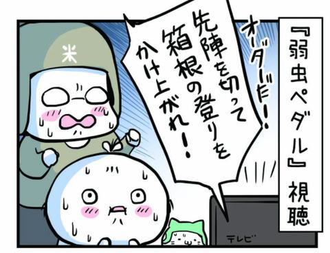 syuttyo_kame_03