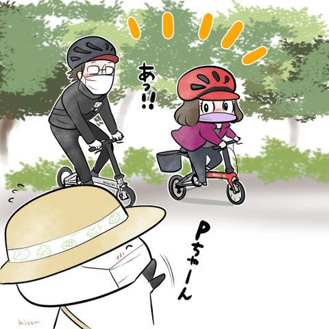 pchan_dahon