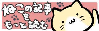 cat_bunner320_100
