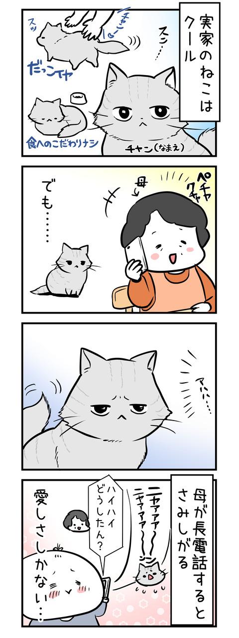 chan_samisii