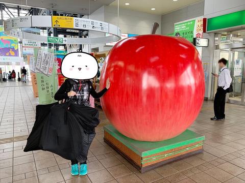 hirosaki_ringo