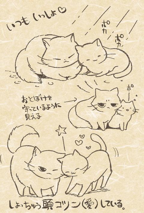 otoboke_gabugabu_cat02