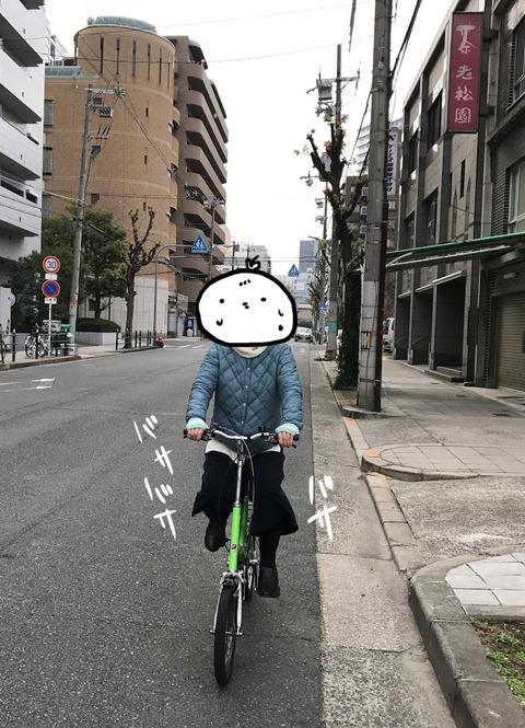 20170106_kikka