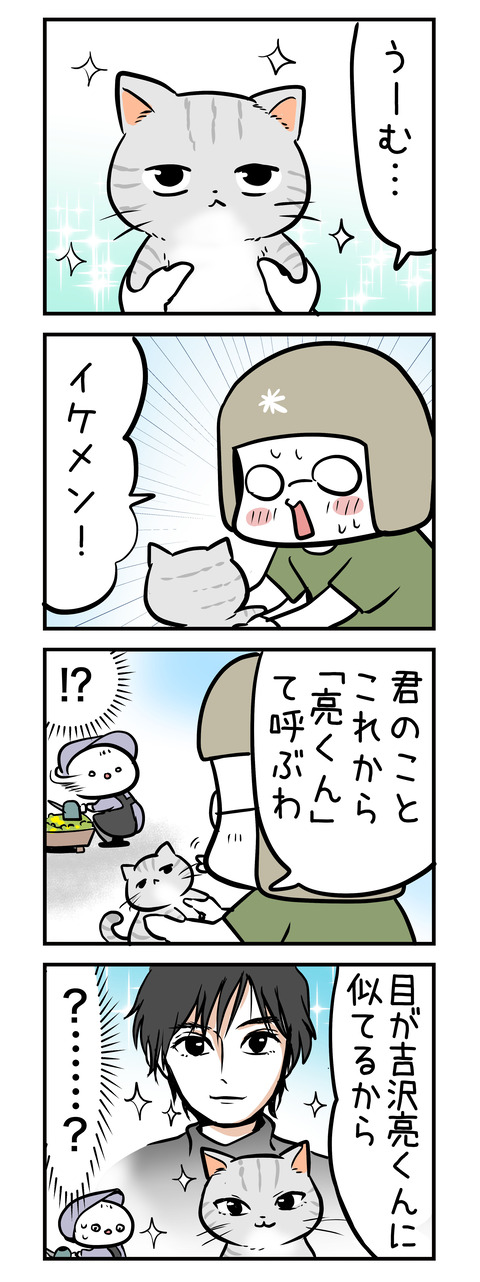 ryoukun_neko