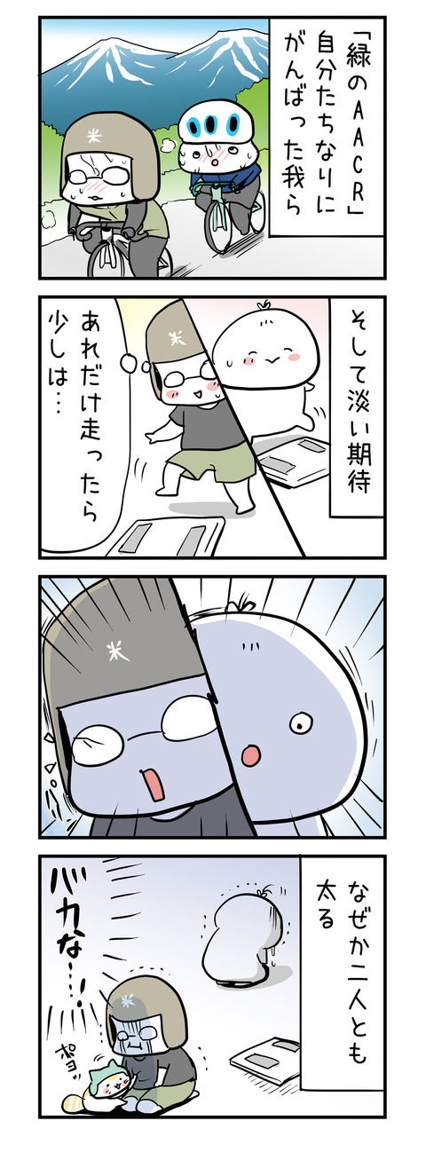 aacr_after_4koma