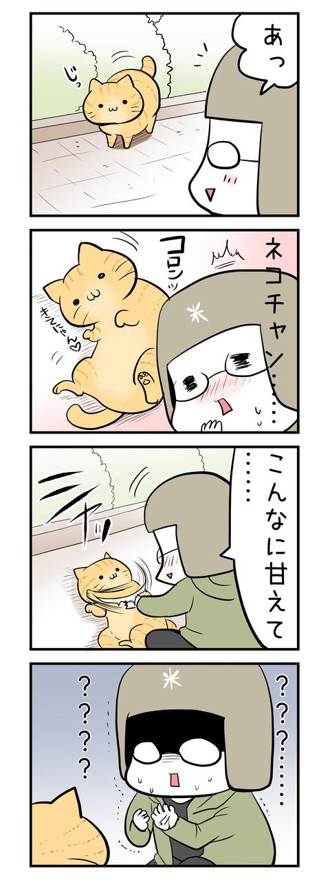 honey_cat