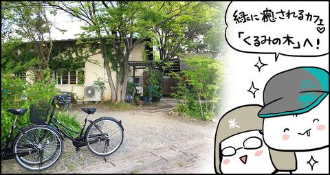 20170819_kurumi_midashi