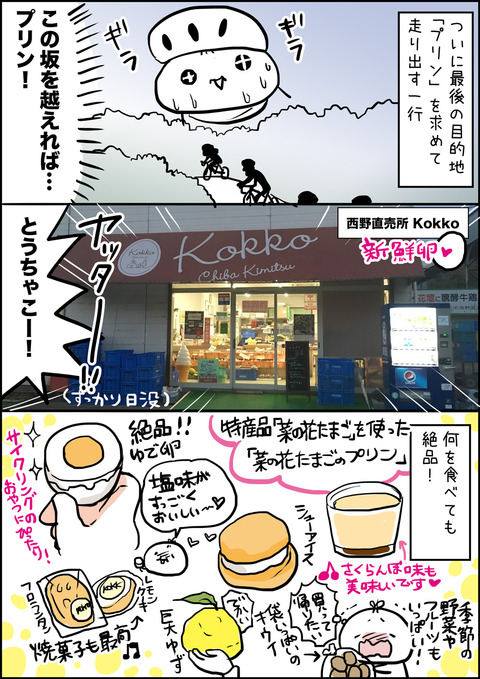 20171207_tibaride_kokko