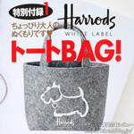 JJ (ジェイジェイ) 2012年 11月号 《付録》 Harrods WHITE LABELトートBAG!