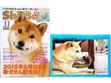 Shi-Ba (シーバ) 2015年 01月号 《付録》 しばせんカレンダー