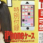 週刊アスキー 2013年 11/5増刊号 《付録》 ペキパキiPhoneケース