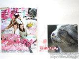 CanCam (キャンキャン) 2013年 01月号 《付録》 2013カレンダー岩合光昭「ちょっとネコぼけ」